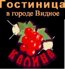 Логотип компании КАЛИНА